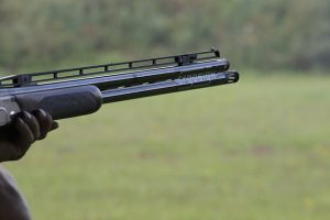 shotgun-1181645_640