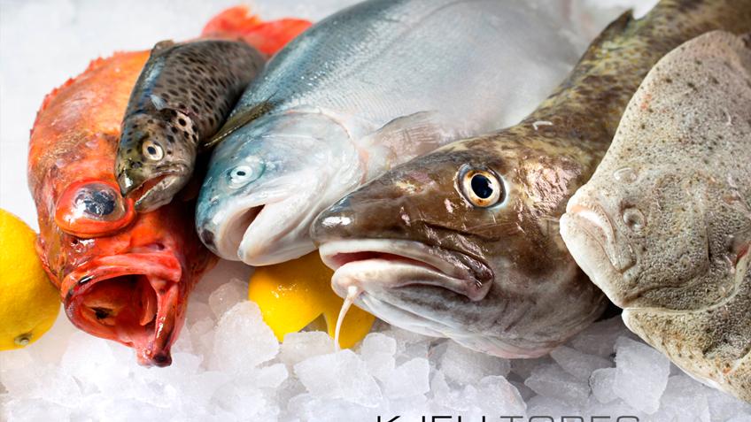 fisk fileteringskurs
