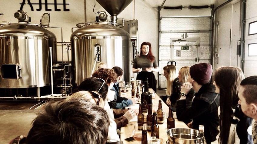 ølsmaking fjell bryggeri