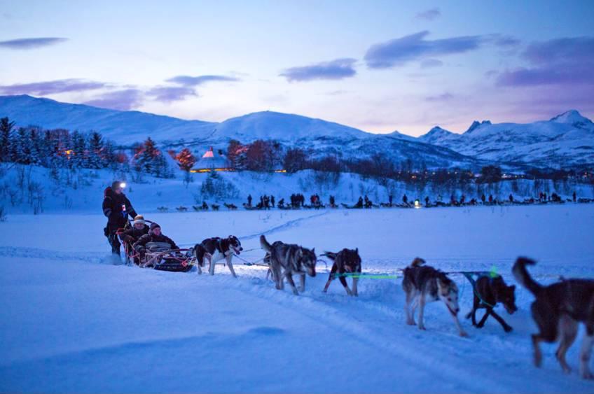 Hundekjøring kveldstid hos Tromsø Villmarkssenter